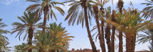 Morocco New Years Luxury Desert Trip
