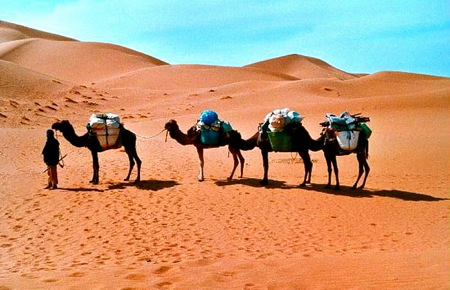 Chigaga 4×4 Sahara Desert Tours to the Erg Chegaga Dunes, Your Morocco Travel Guide