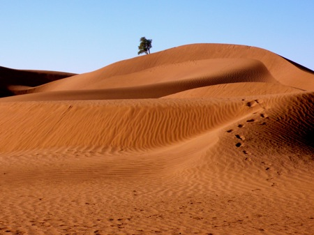 Zagora 4×4 Sahara Desert Tour Of Amezrou & Ancient Jewish Mellah, Your M'hamid Morocco Travel Guide