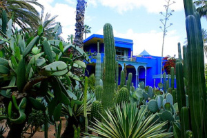The Majorelle Gardens in Marrakech, Your Morocco Tour Guide
