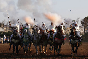 The Tissa Horse Festival, Your Morocco Tour Guide