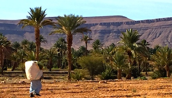 Morocco Adventure Tours for Families, Morocco Holiday Guide
