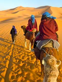Sahara Desert Tour, Camel Trek in the Erg Chebbi Dunes