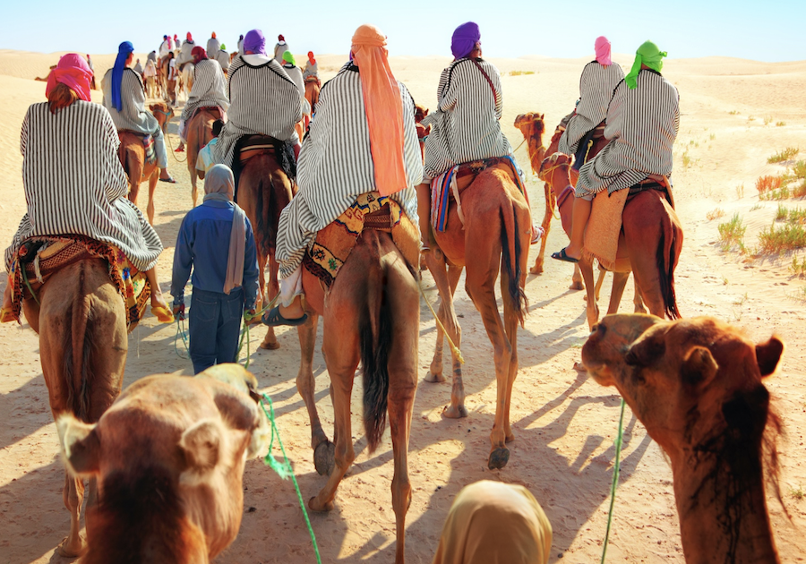 The 9 Best Morocco Family Vacation Ideas Perfect for Summer Travel