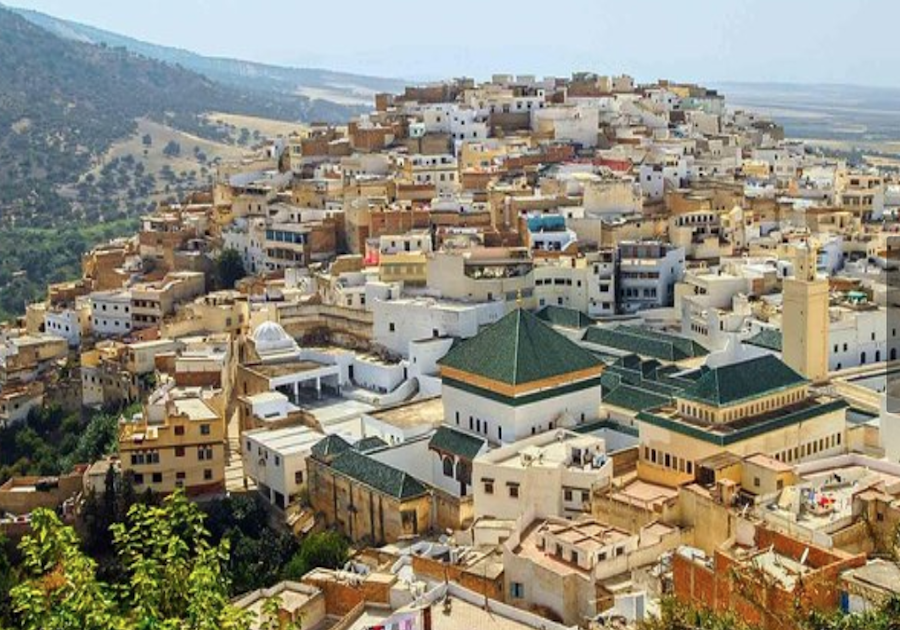 Top 10 Things to See and Do in Moulay Idriss & Volubilis
