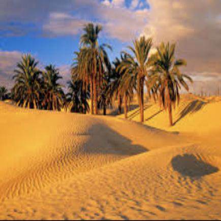Zagora-Desert-Morocco-Travel-Blog