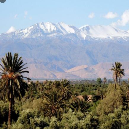 Splendors-of-Morocco-Best-Tour-Morocco-Travel-Blog
