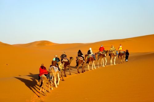 New Years Desert Trips in Morocco