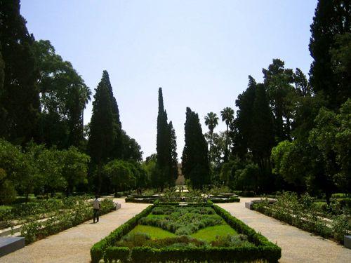The Medina Gardens of Fes, Your Morocco Tour Guide