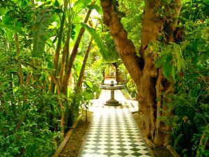 Boutique Riad Garden-Courtyard, Travel Exploration