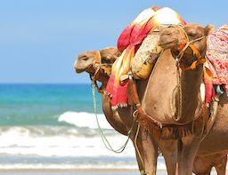 Morocco-Weather-Travel-Exploration1