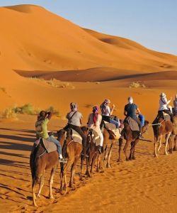 Morocco Family Adventure Tour, Sahara Desert
