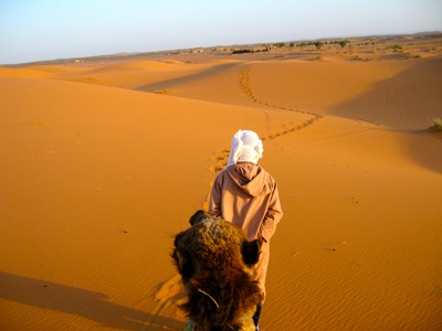Morocco Travel Agency, Absolute Morocco Holidays, Customized Tours & Private Travel With Travel Exploration Travel Agency