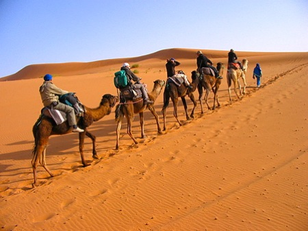 Image of: Dreamstime Cameltrekkinginsaharadesert Morocco Travel Blog Sahara Desert Tour Circuit 44 Camel Treks From Fes Your Morocco