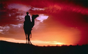 New Years Eve in The Sahara Desert, Your Morocco Tour Guide
