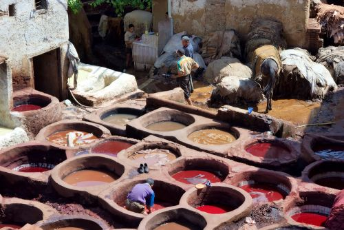 Travel Within Fes Morocco's Leather Tanneries