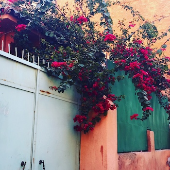 Top 5 Tours From Marrakech