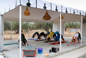 Peacock Pavilion, Wild Women Do, Yoga Tent