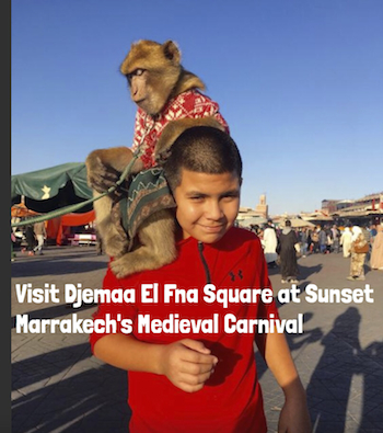 Djemaa El Fna Square with Kids