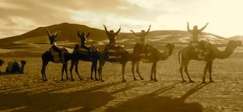 Sahara Tours from Marrakech, Our Top Desert Experiences